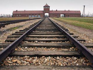 Protestors strip naked, kill sheep at Auschwitz