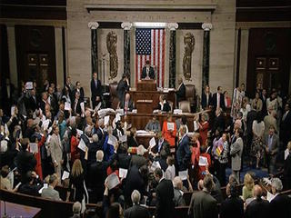 Dems stage election-year sit-in on guns