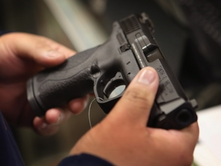 Who should decide if vets are fit to own a gun?