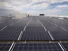 Trump solar panel tariff to impact local vendors
