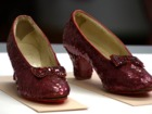 Dorothy's ruby slippers back on display